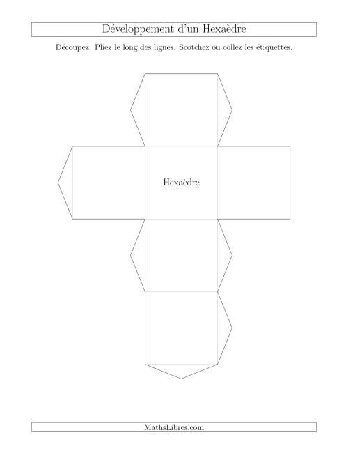 La Développement d'un Hexaèdre Fiche d'Exercices sur la Géométrie