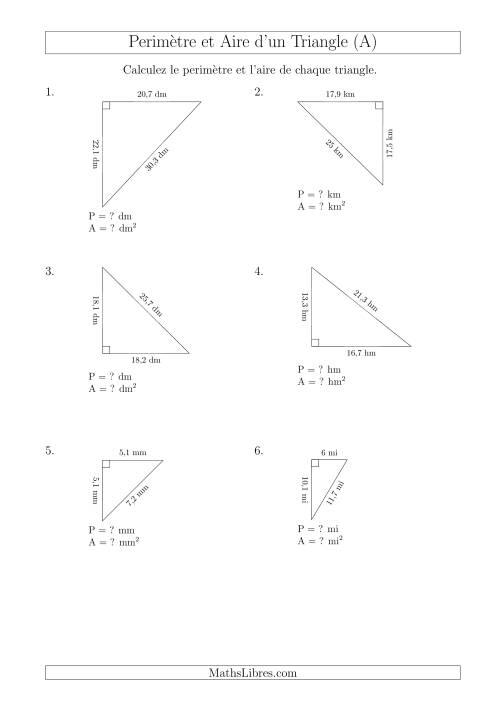 La Calcul de l'Aire et du Périmètre d'un Triangle Rectangle (A) Fiche d'Exercices sur les Mesures